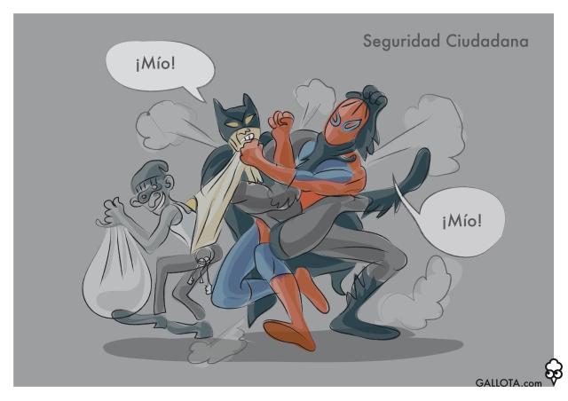 131219 SEGURIDAD CIUDADANA